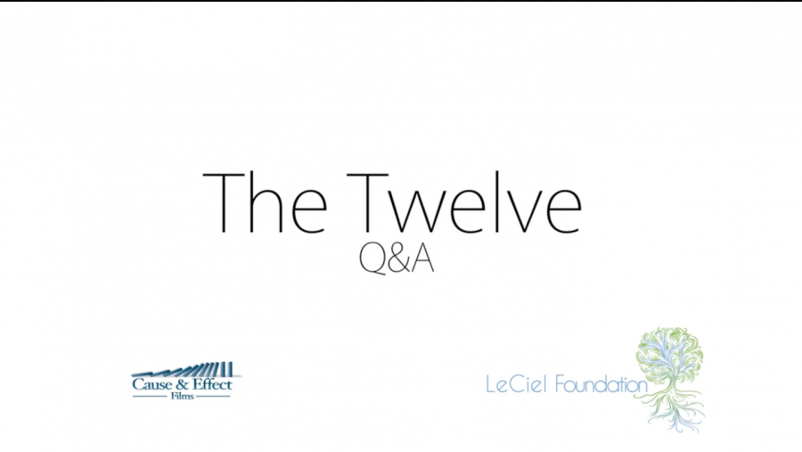 THE-TWELVE-POST-SCREENING-Q&A-ENGLISH