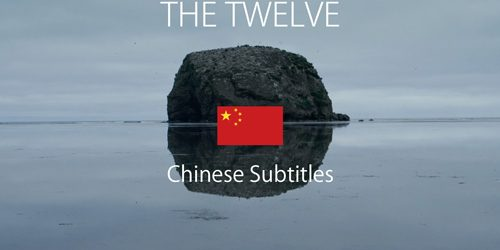 THE TWELVE-CHINESE SUBS-GOOD